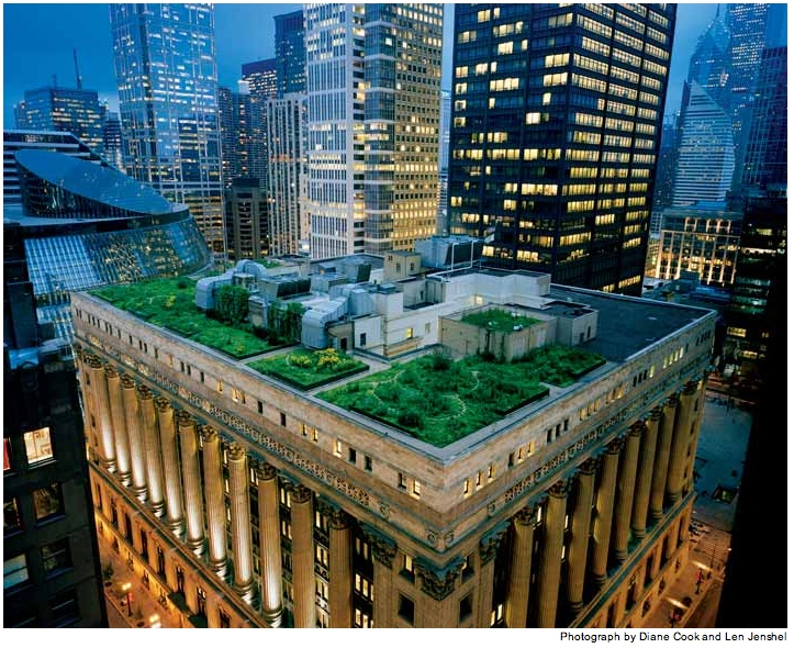 The green roof atop Chicago's City Hall