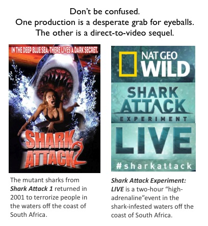 Shark Attack video and National Geographic TV show