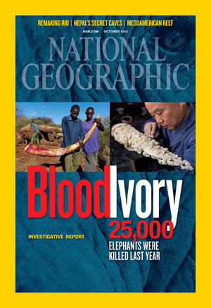 NGM Blood Ivory cover