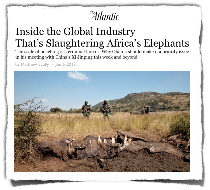 The Atlantic story on elephant poaching
